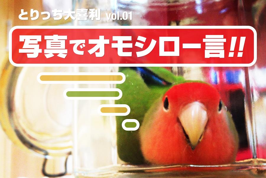 とりっち大喜利Vol1 (佳作)