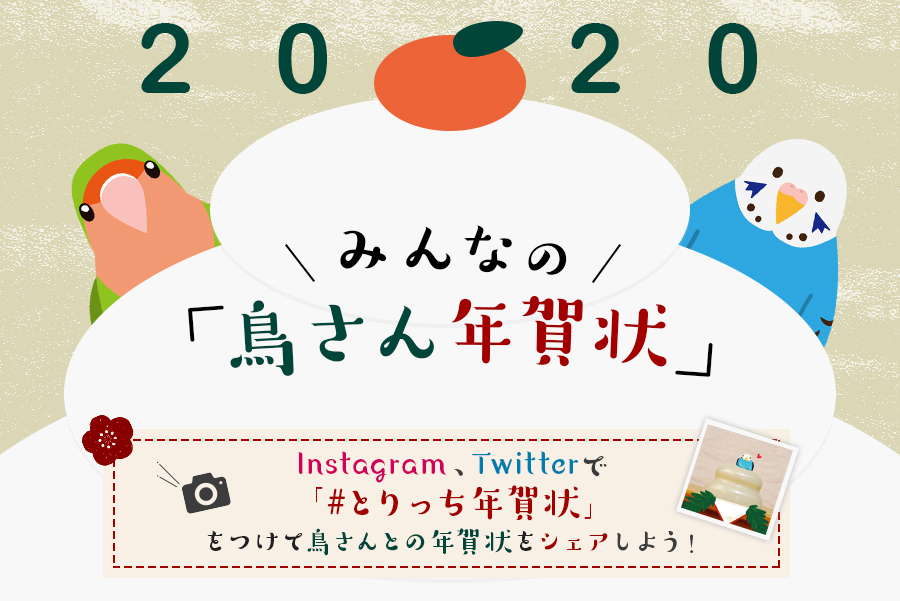 ちょいSNS企画vol2:鳥さんの年賀状集/ 2020年(8件)